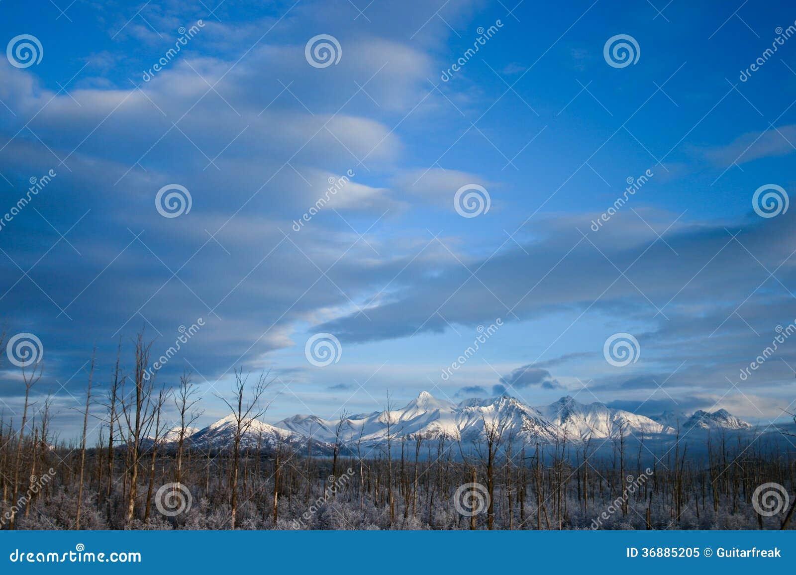 Download Montagne d'Alasca in neve immagine stock. Immagine di neve - 36885205
