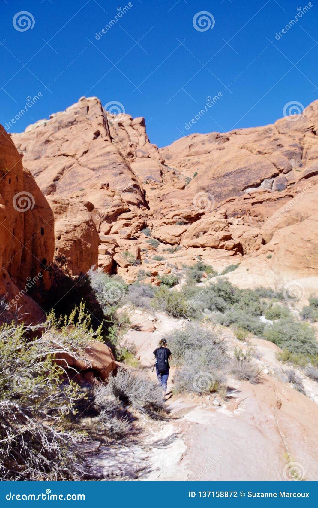 Montagne de Papier d emballage, région rouge de conservation de roche, Nevada du sud, Etats-Unis