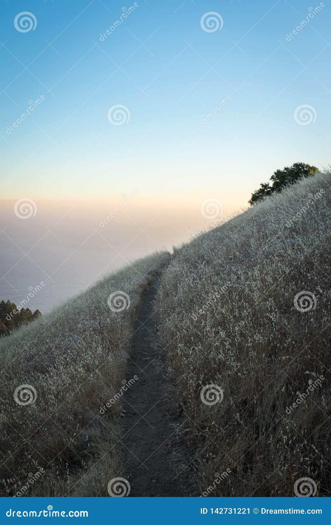 Montagne de Tamalpais