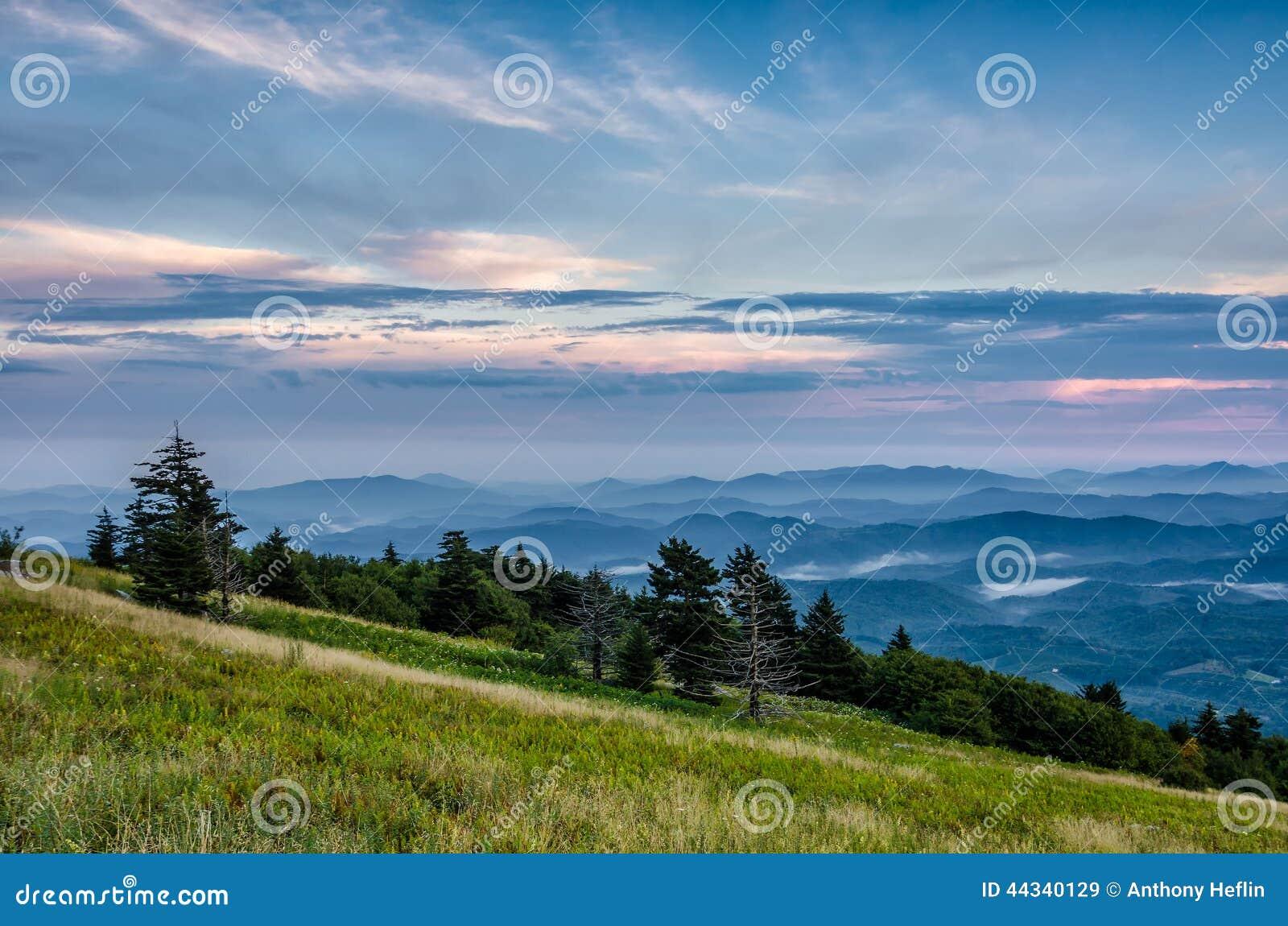 Montagne de Whitetop, la Virginie