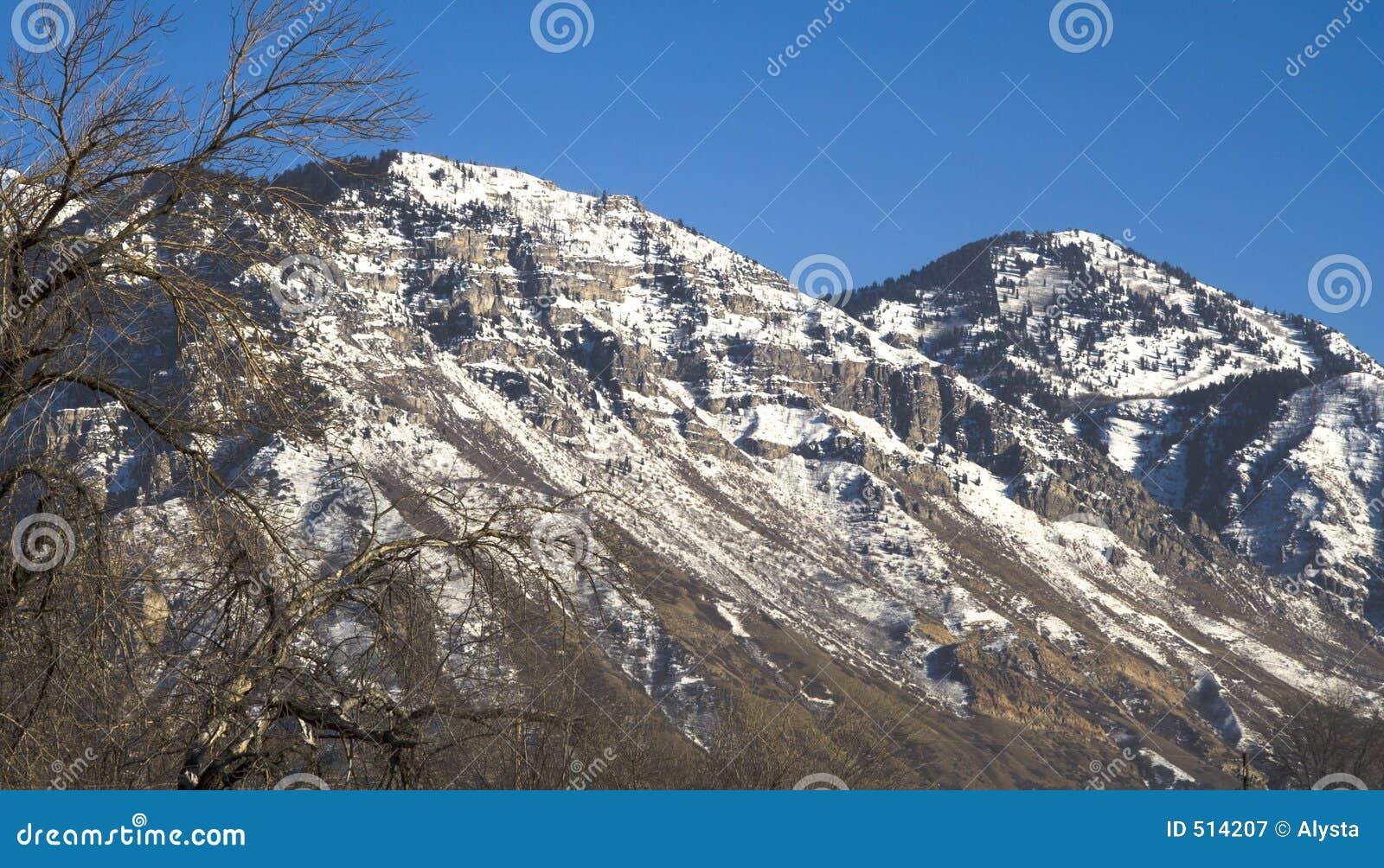 Montagne della contea dell Utah