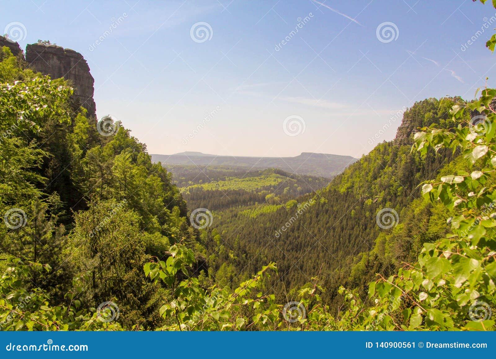 Montagne di Tatras coperte dalle abetaie verdi, repubblica Ceca