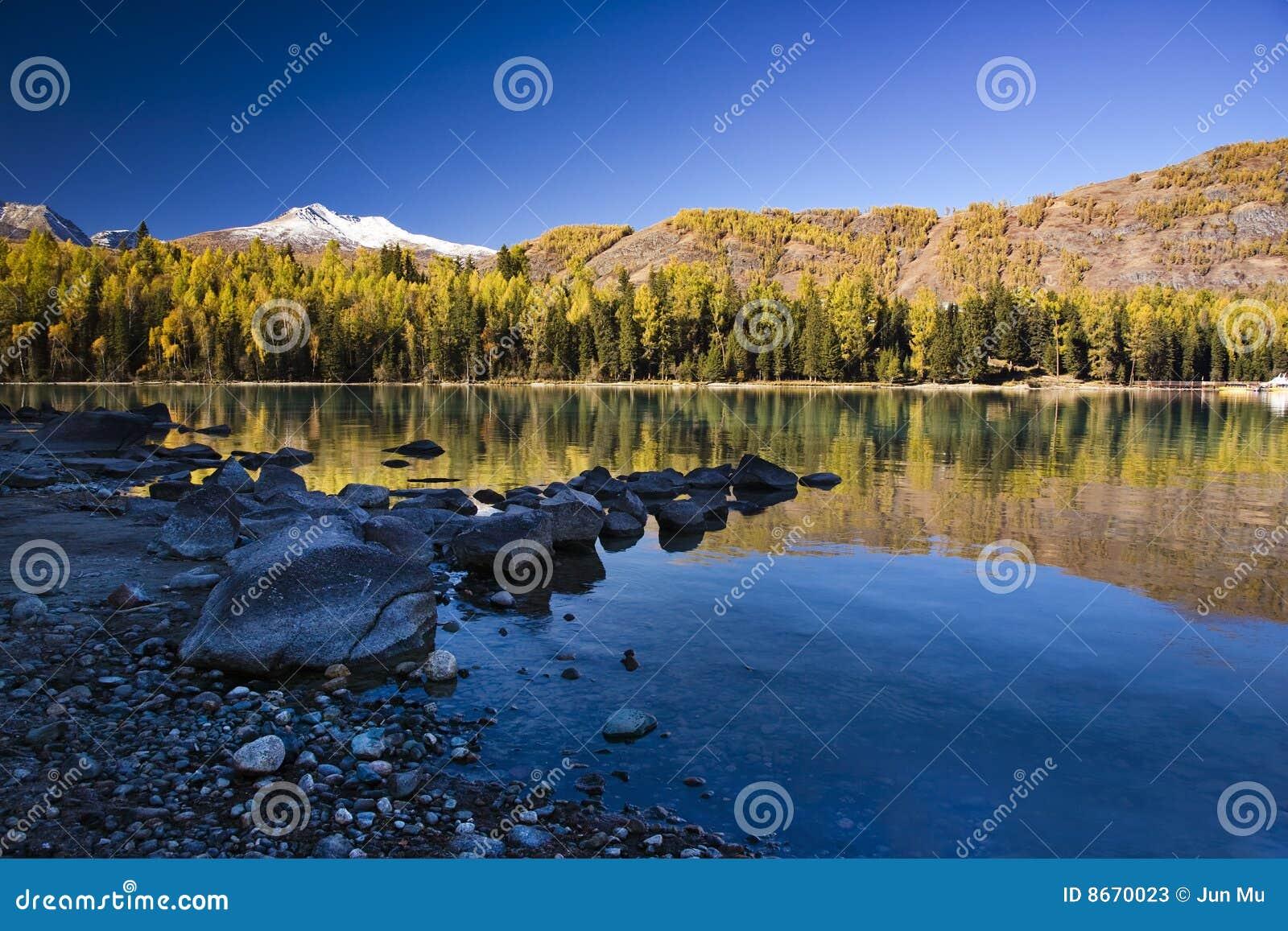 Montagne et forêt