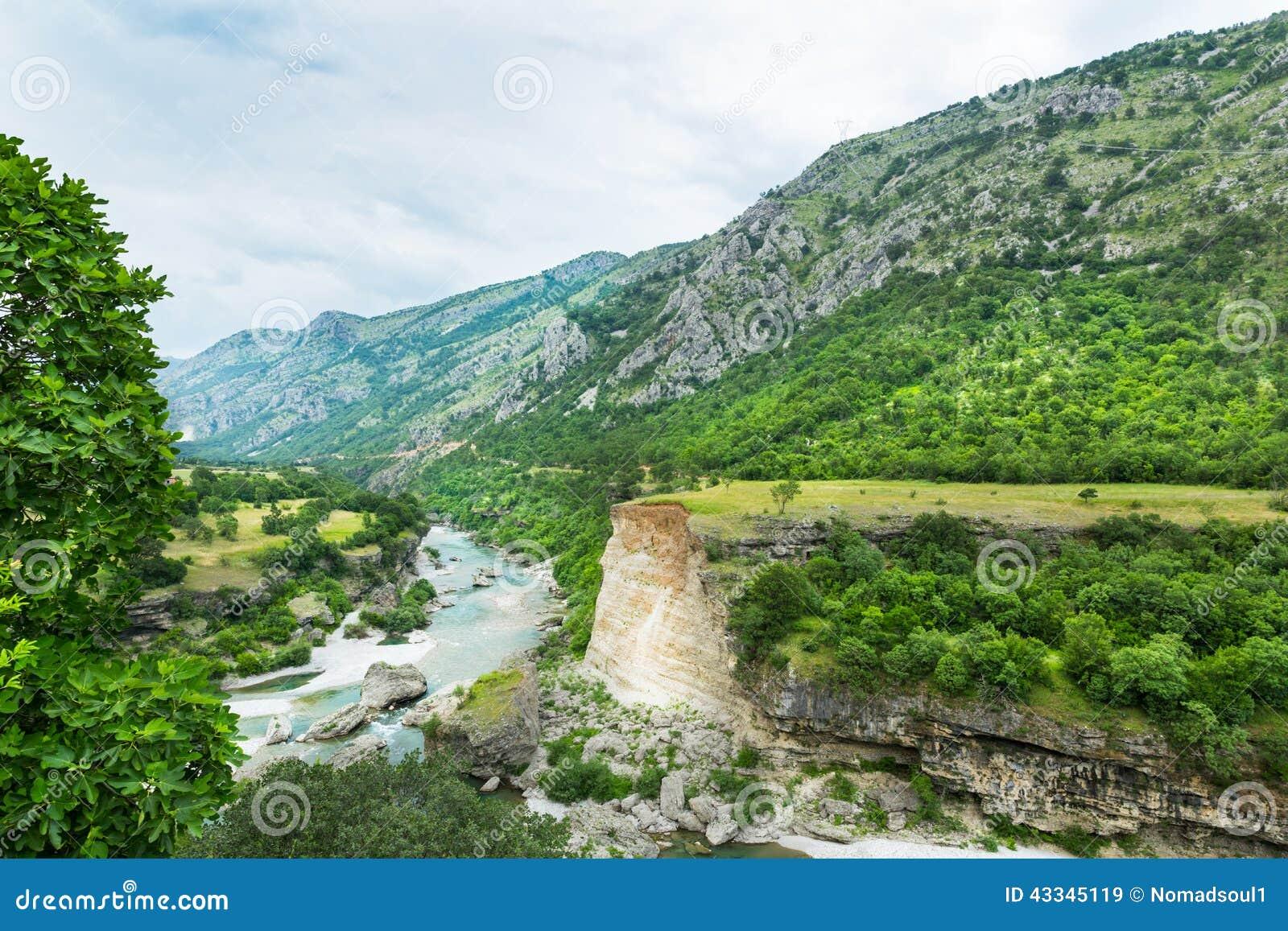 Montagne et paysage vert de Monténégro