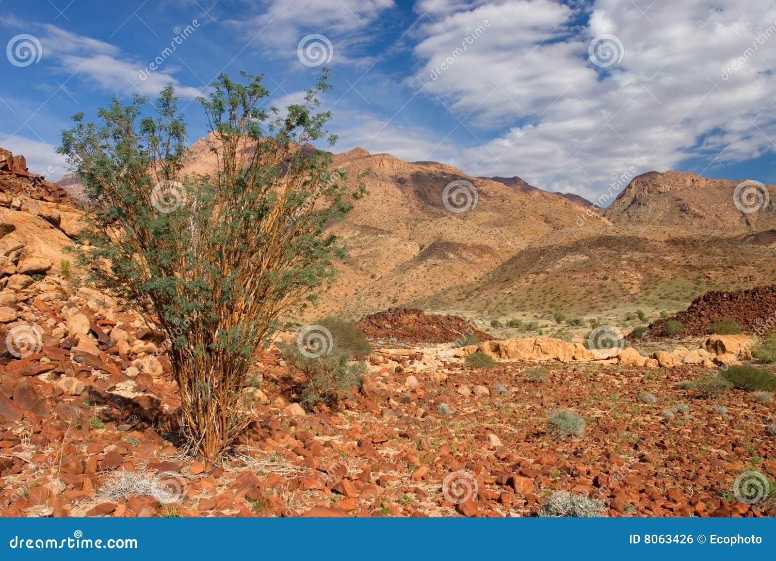 Montagne Namibie d horizontal de désert de brandberg