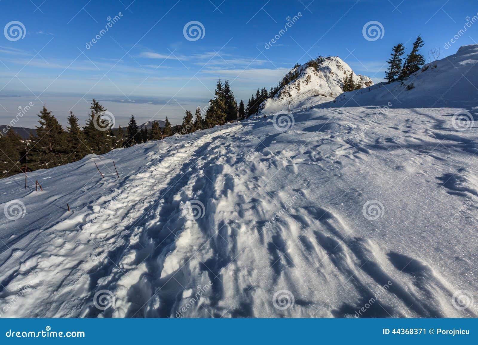 Montagne nell inverno, Romania di Postavaru
