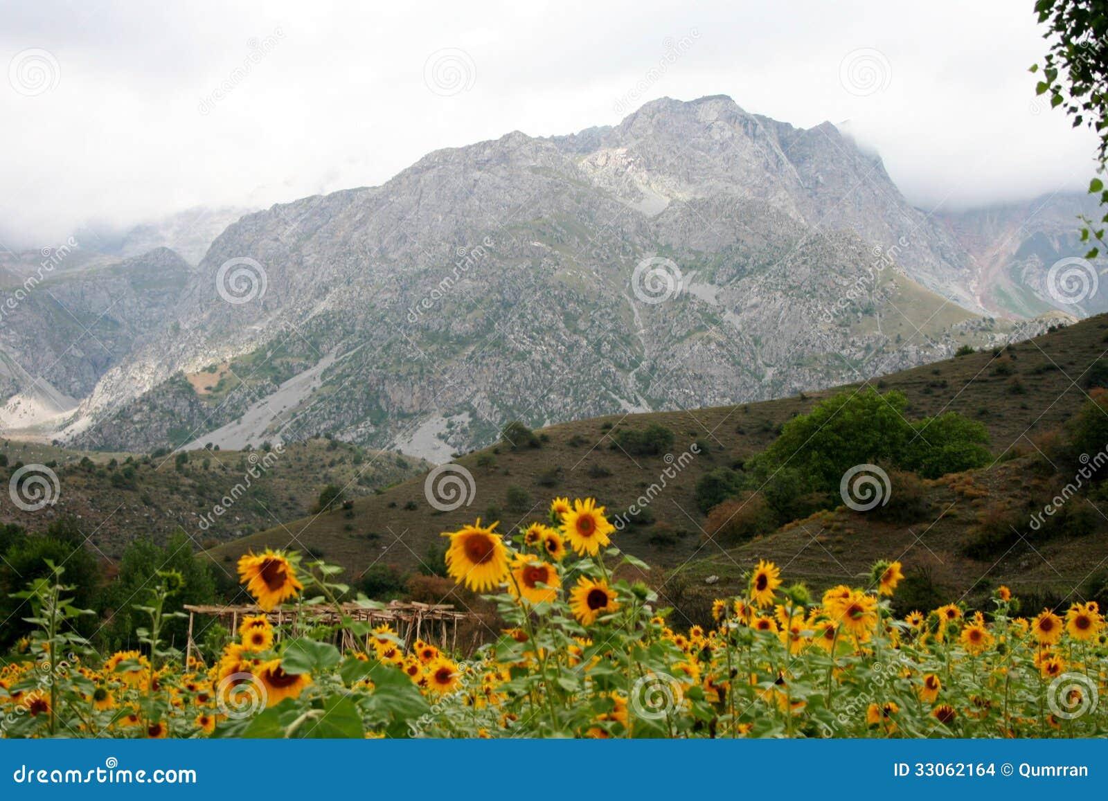 Montagnes au Kirghizistan