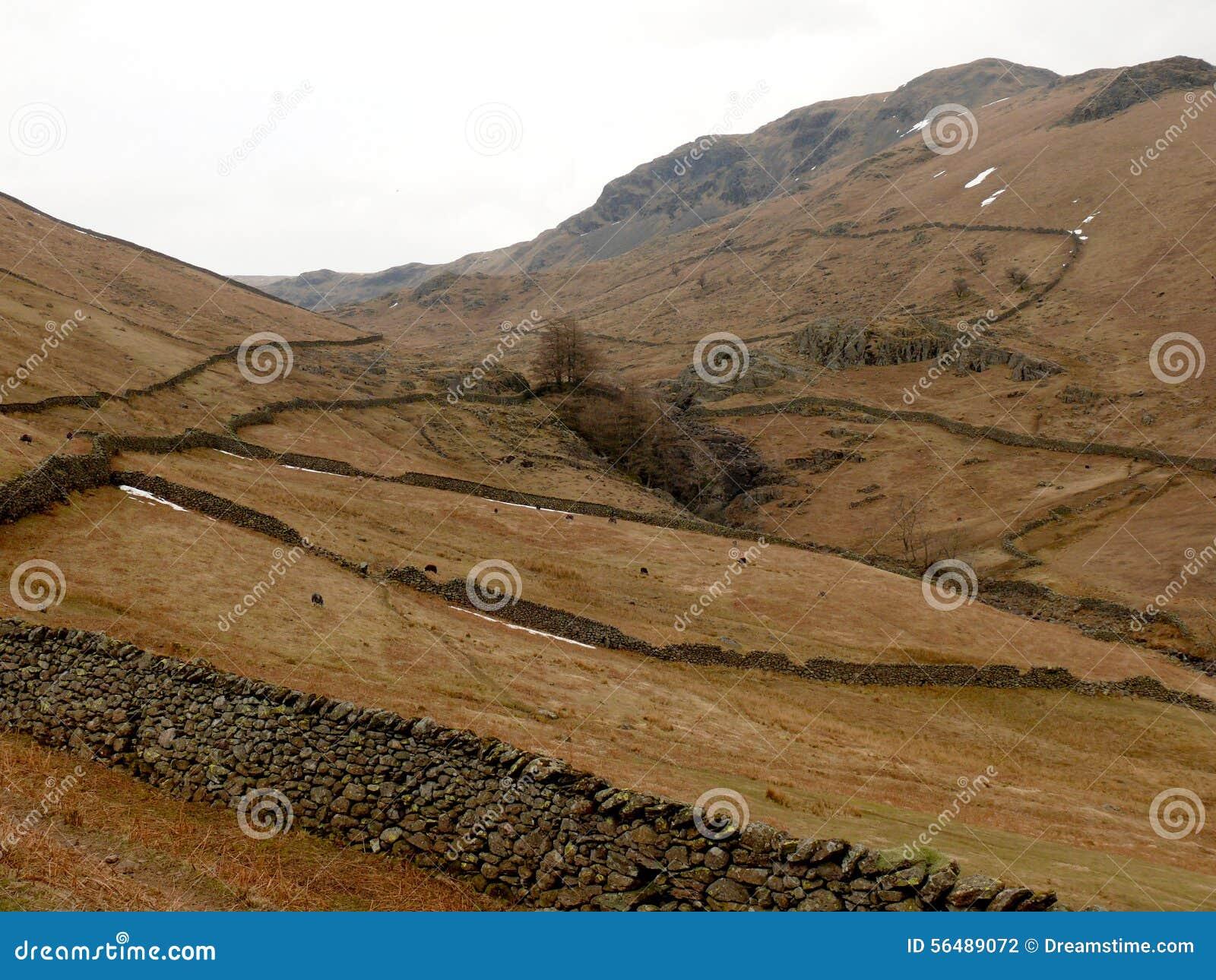 Montagnes au secteur de lac, Cumbria, Angleterre R-U