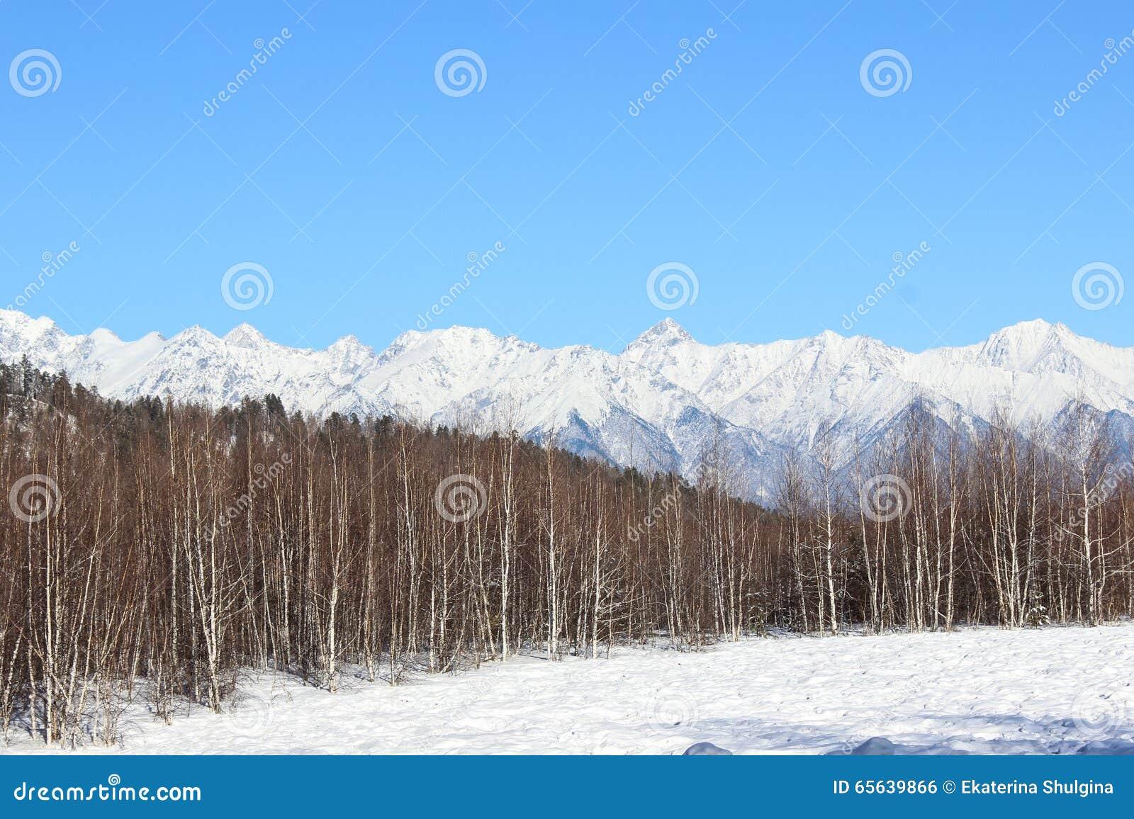 Montagnes blanches de falaises