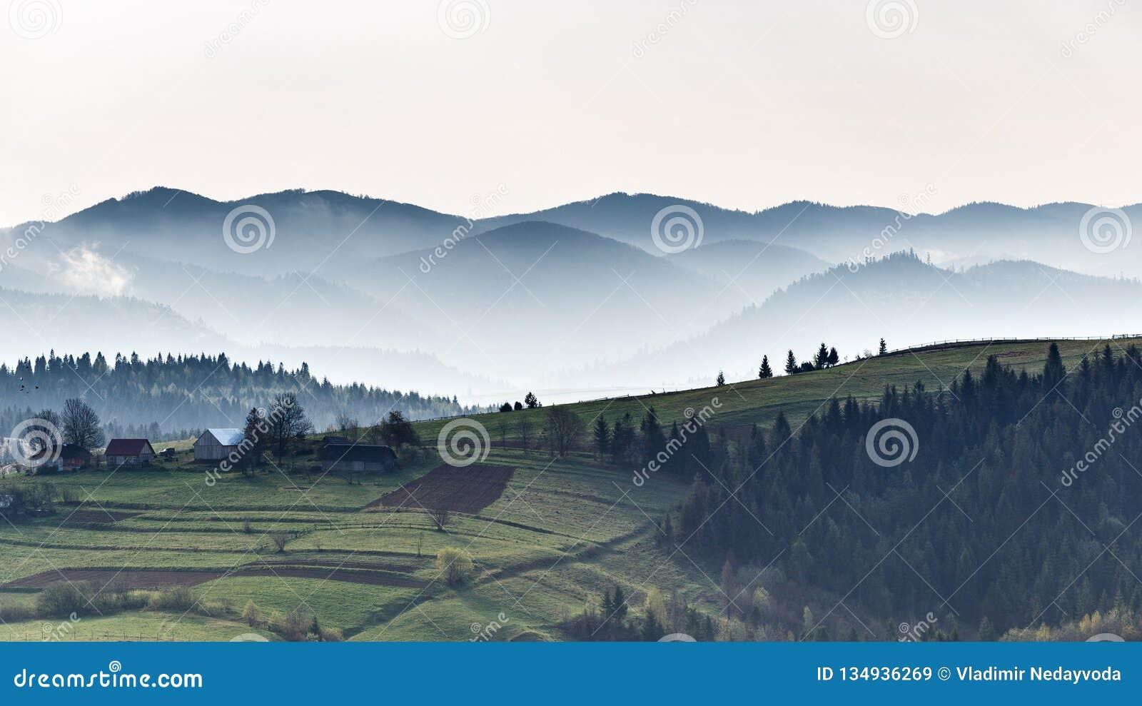 Montagnes carpathiennes Matin brumeux Automne dans les montagnes