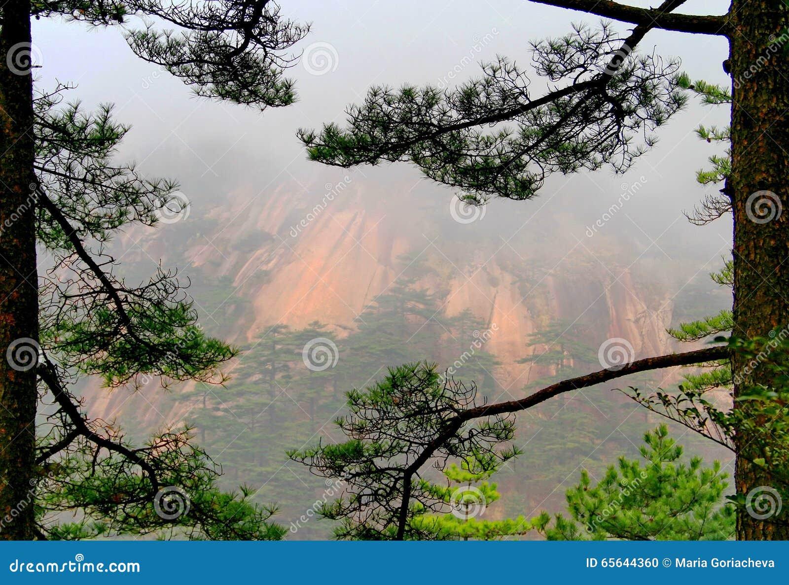 Montagnes de Huangshan, Chine
