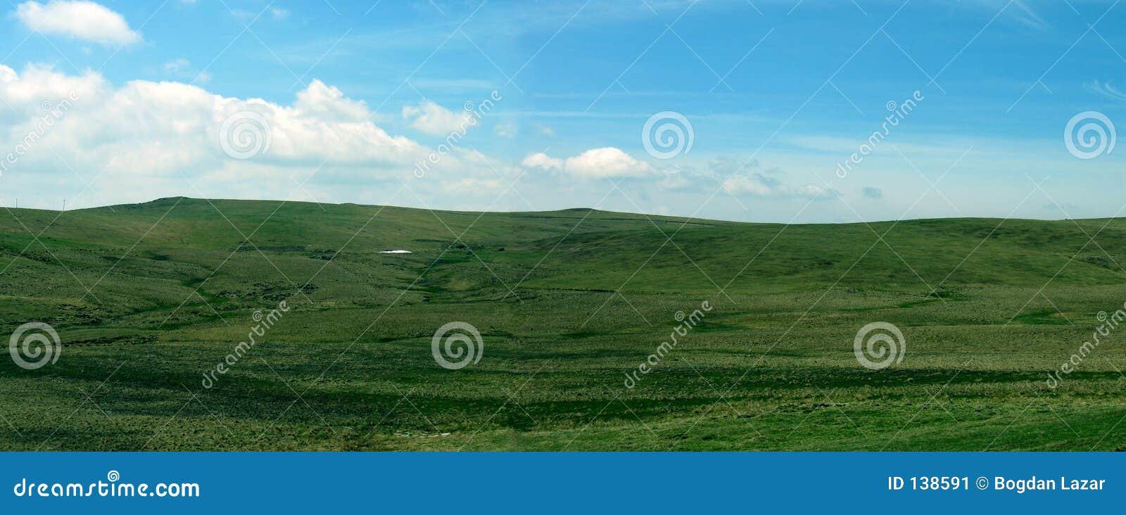 Montagnes vertes panoramiques