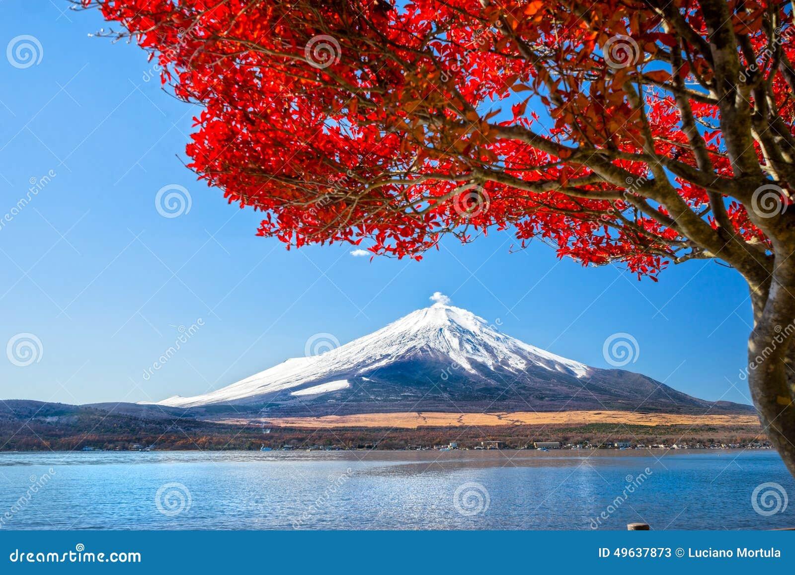 Montaje Fuji, Japón