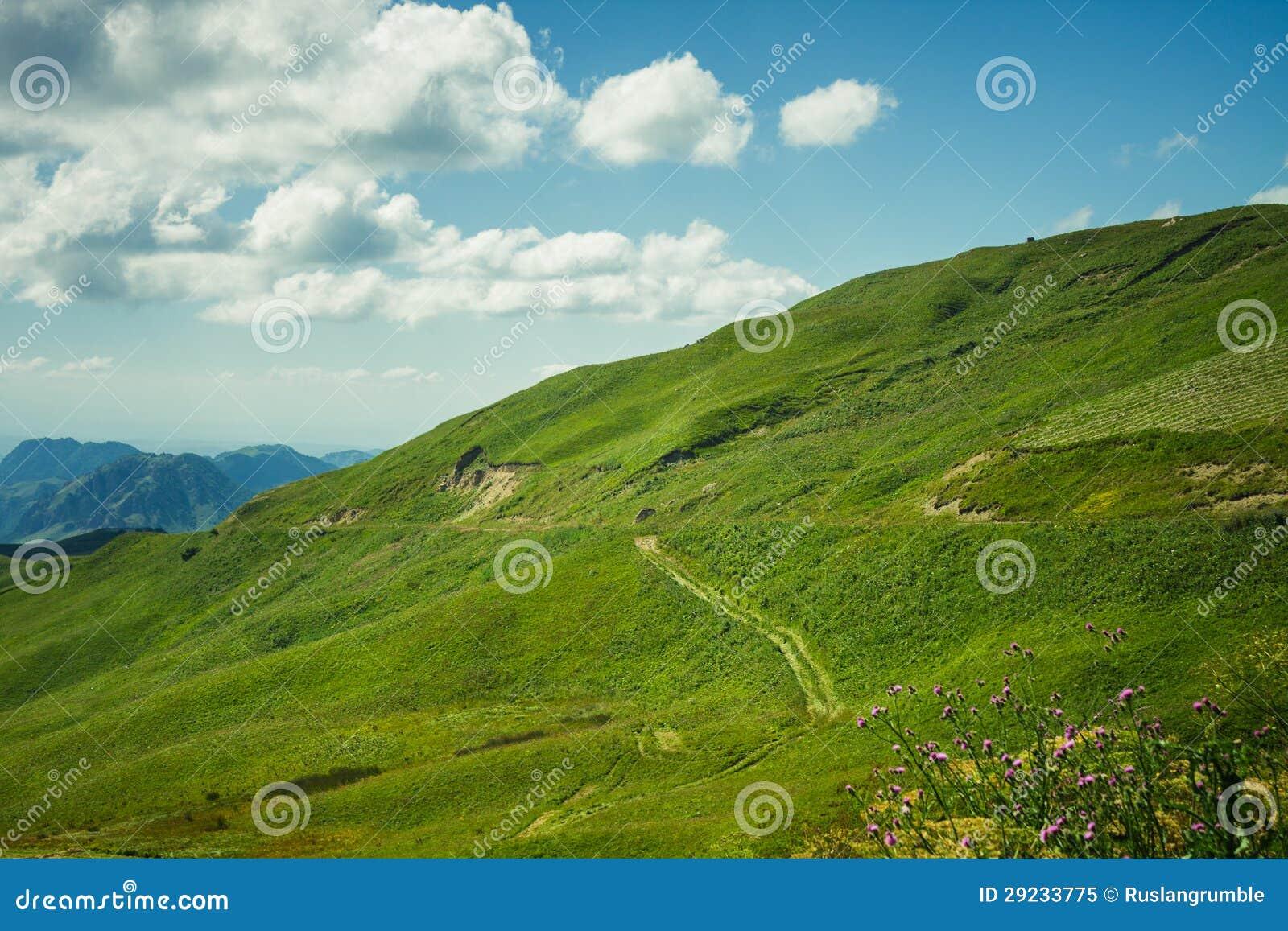 Download A Montanha Da Grama Verde Do Verão E Do Céu Azul Ajardina Imagem de Stock - Imagem de verde, bonito: 29233775