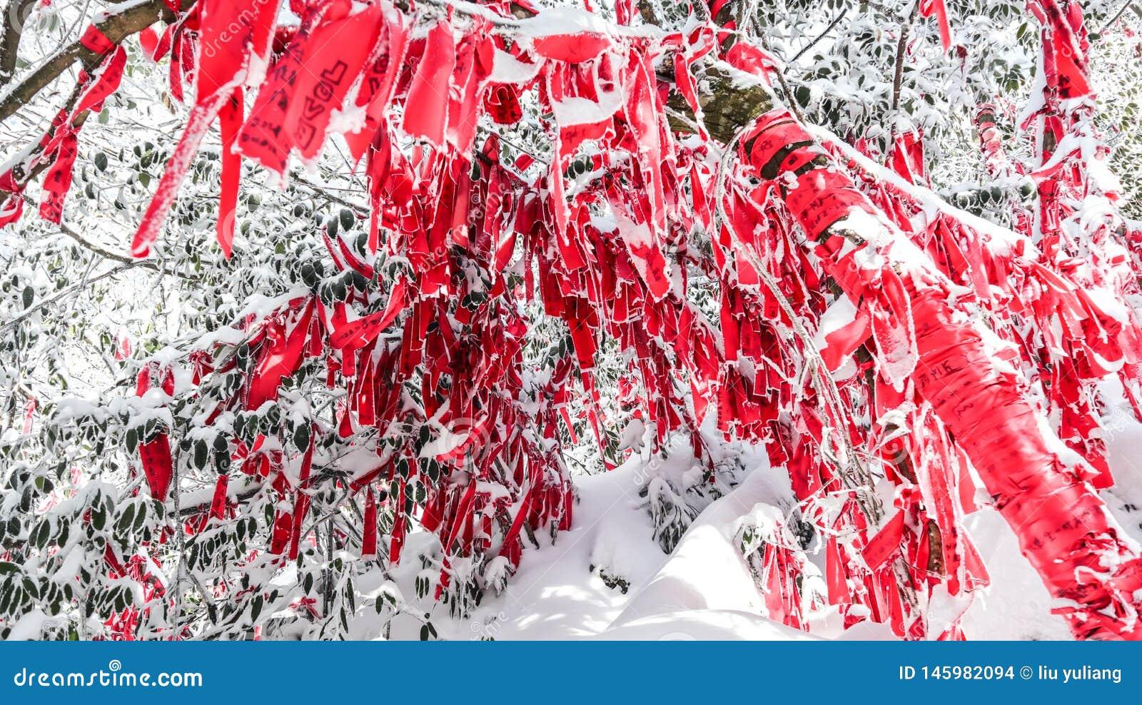 Montanha de Tianmen, Zhangjiajie, Hunan, China, neve do inverno e poluição atmosférica, ramos, fitas vermelhas