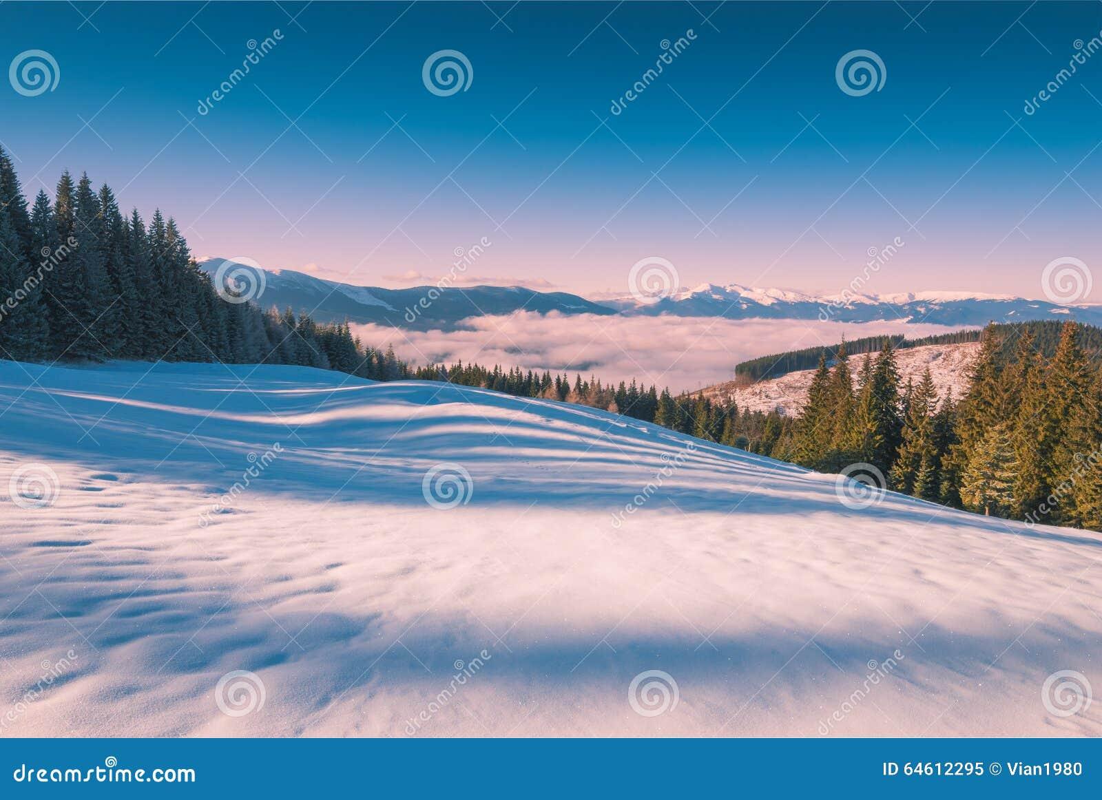 Montanha enevoada Carpathian