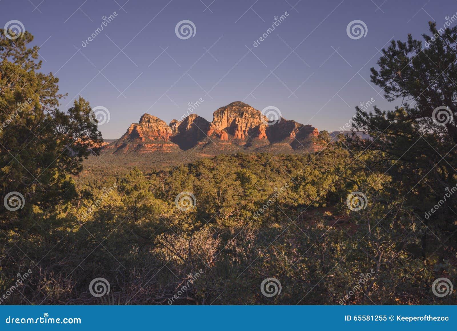 Montanha quadro árvore do trovão