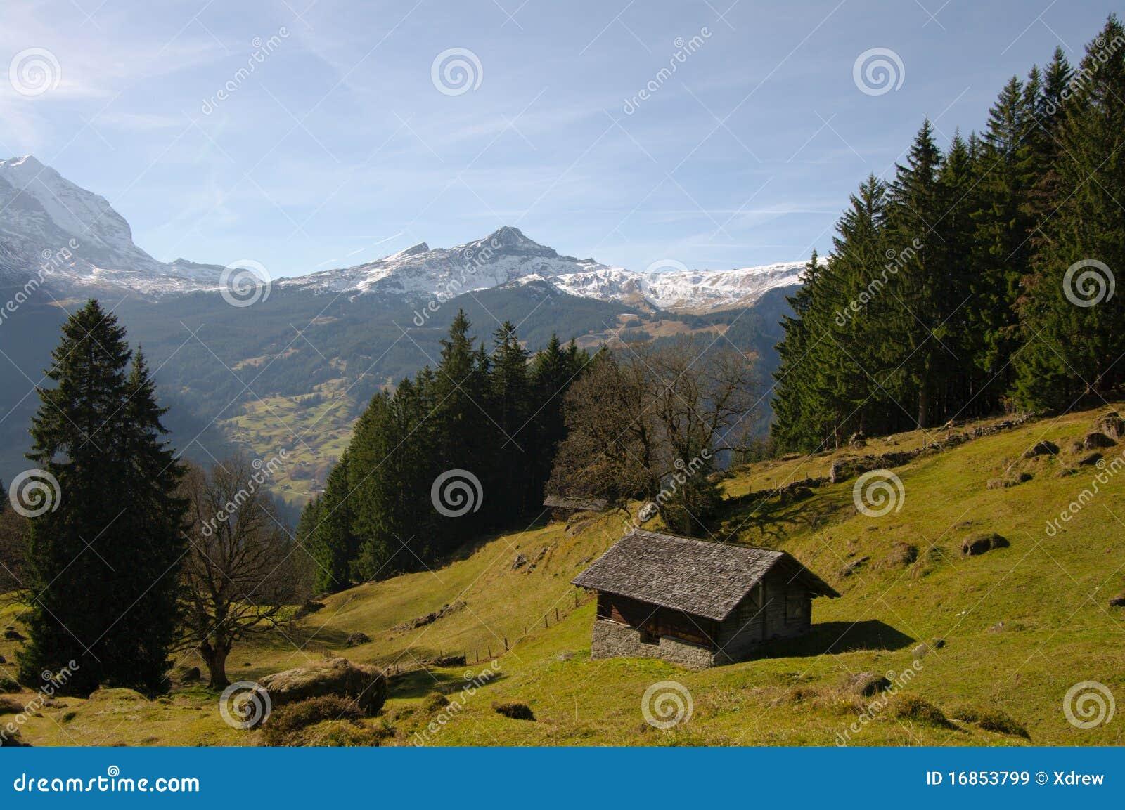 Montanha suíça cénico