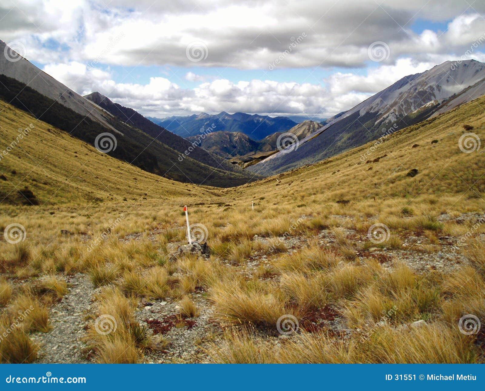 Montanhas de NZ