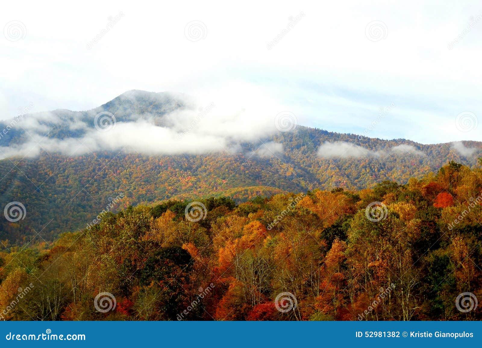 Montanhas nortes de Carolina Appalachian na queda