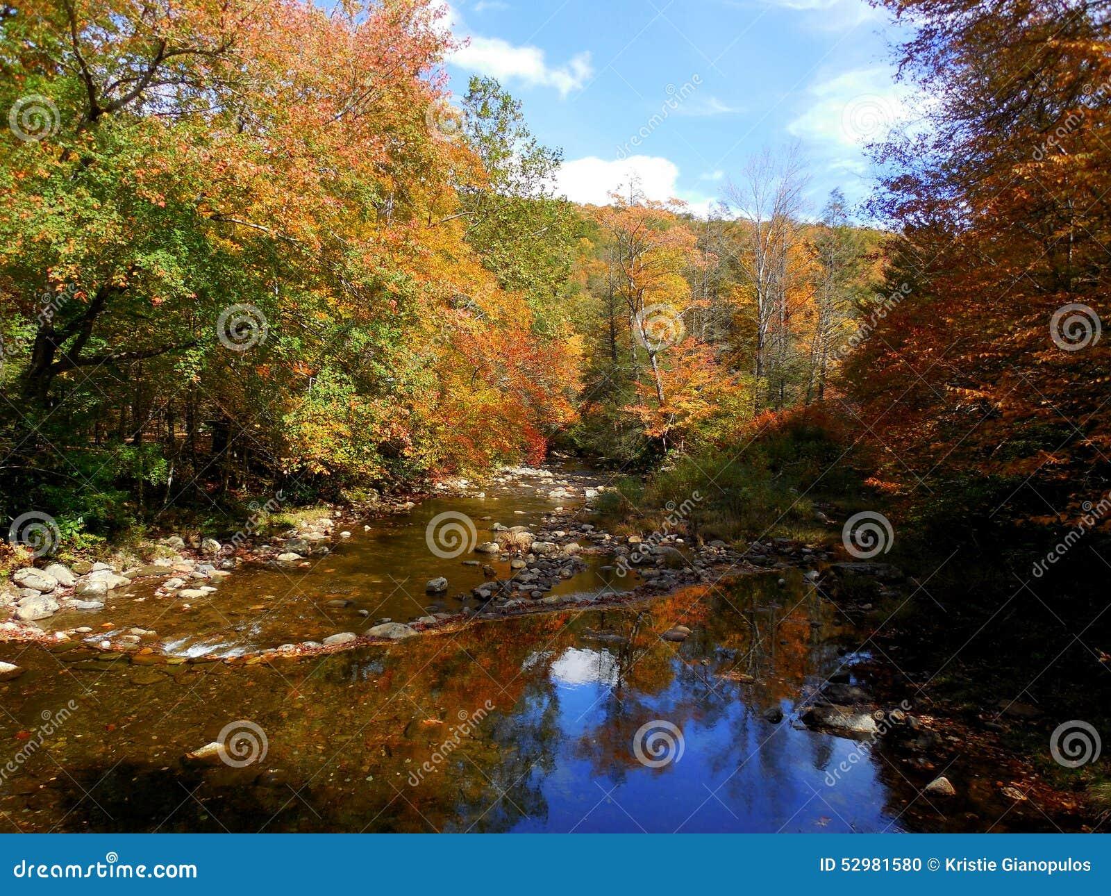 Montanhas nortes de Carolina Appalachian na queda com rio