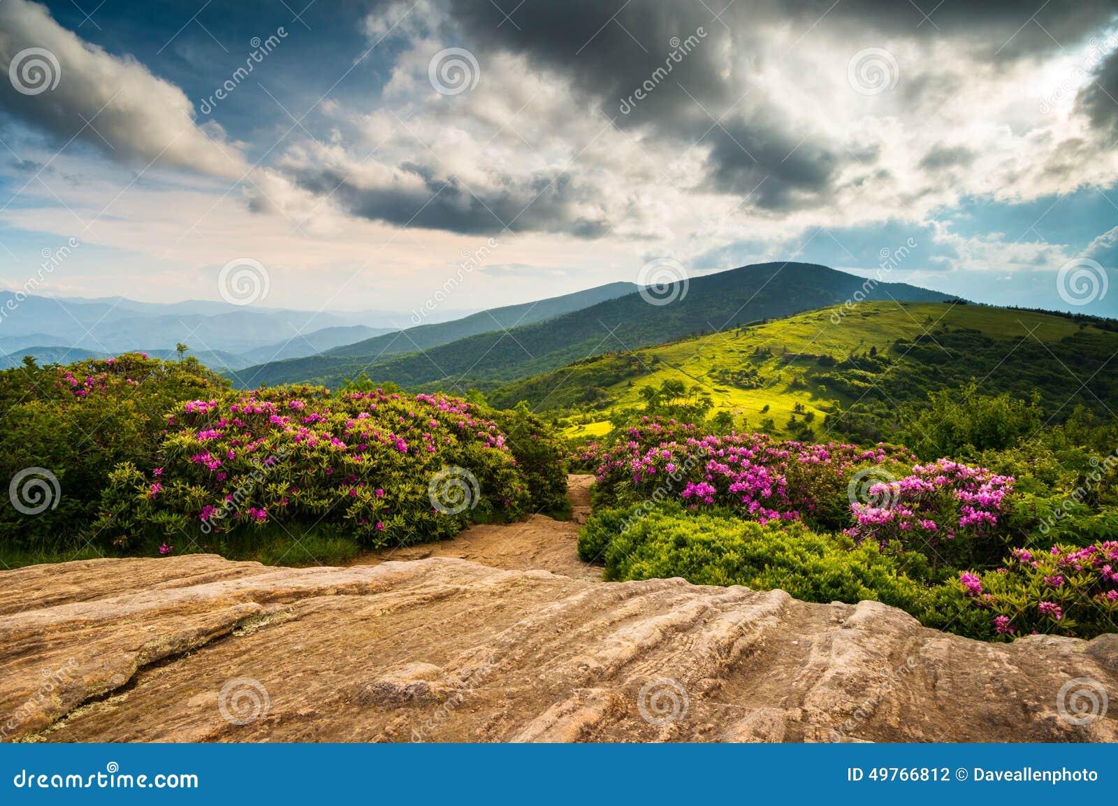 Montanhas nortes Landsca de Carolina Appalachian Trail Spring Scenic