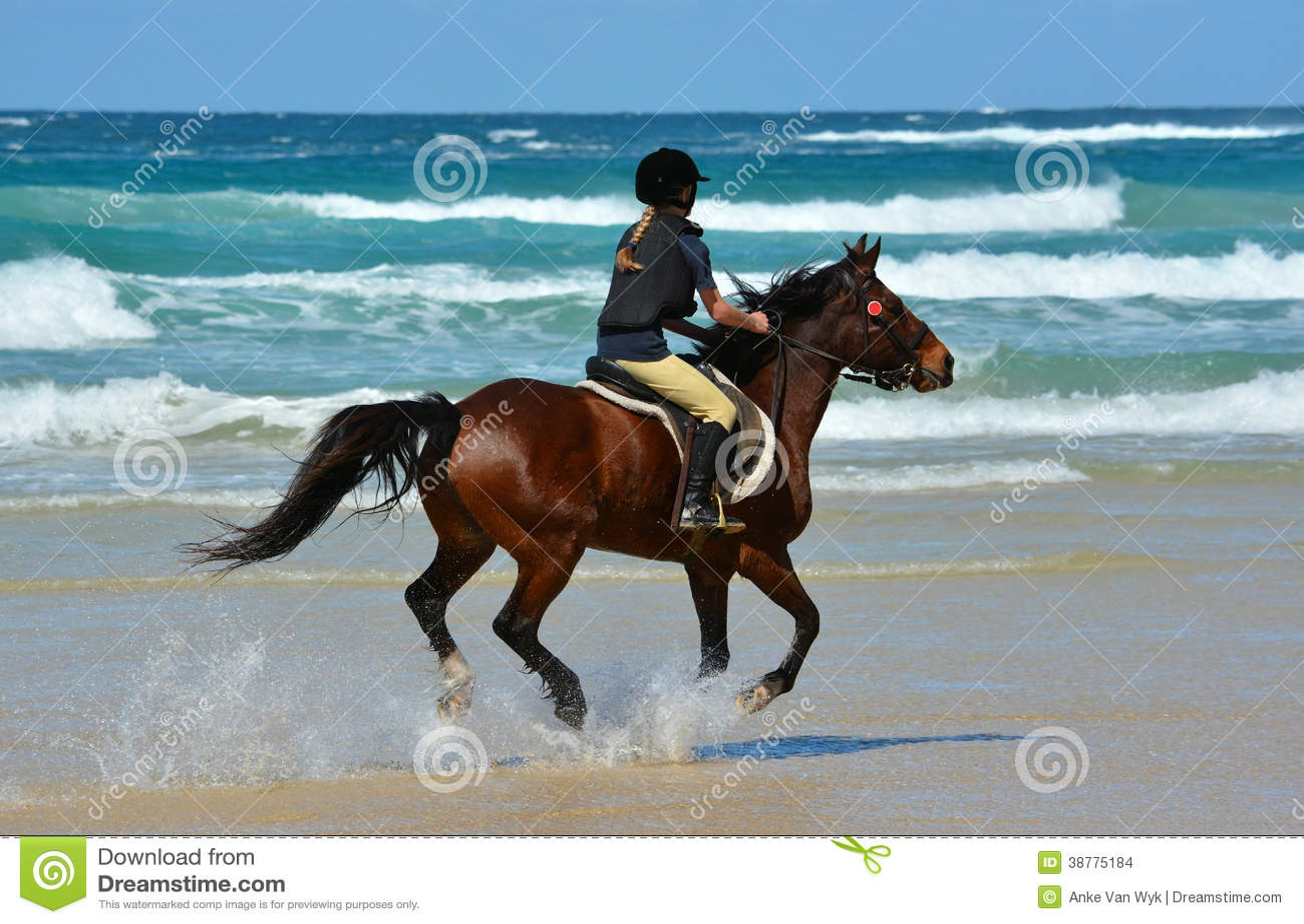 Montar a caballo de la parte posterior del caballo del jinete en la playa