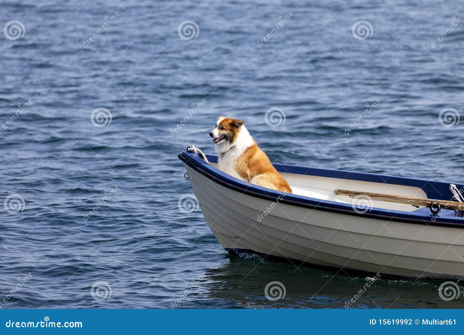 Montar un barco