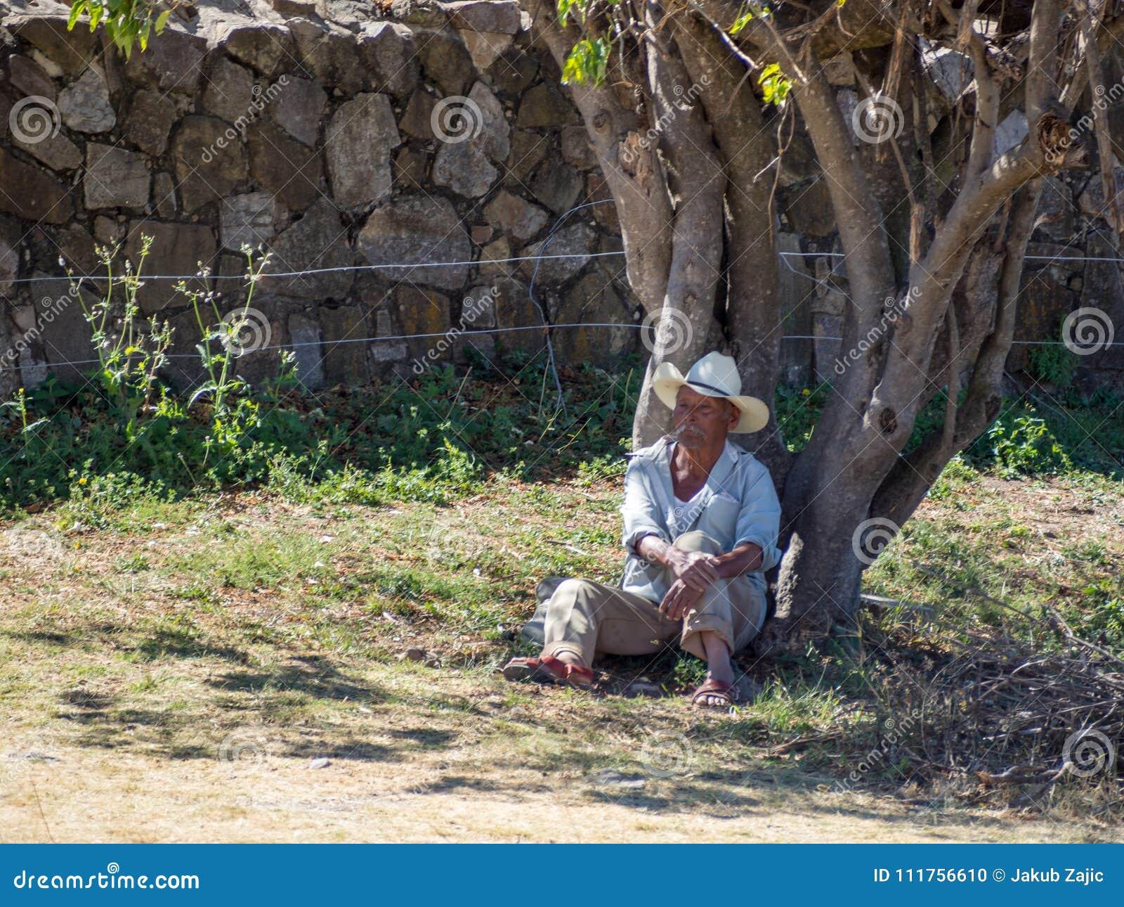 Monte Alban, Oaxaca, Mexique, Amérique du Sud : [Homme mexicain dans le chapeau s étendant sous arbre, repos, vendant des souveni