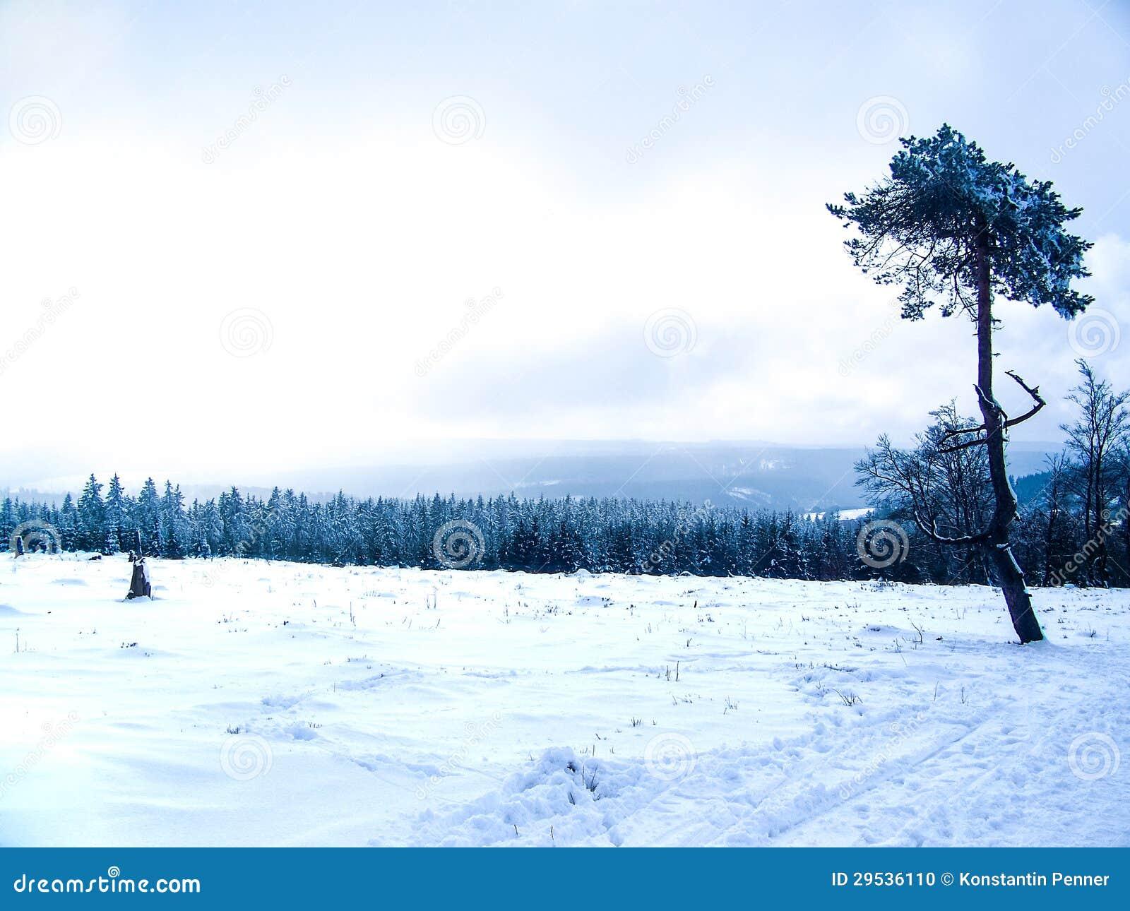 Monte do inverno com neve em Winterberg