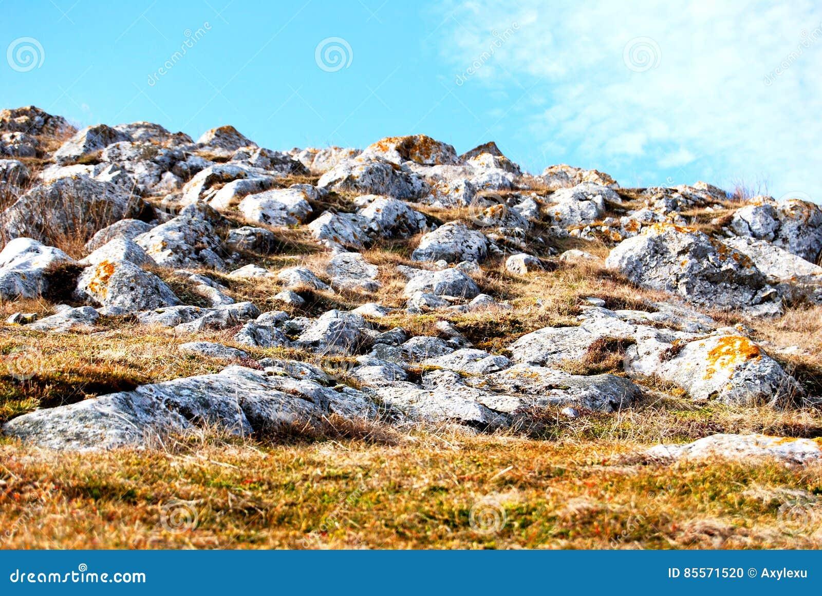 Monte dourado