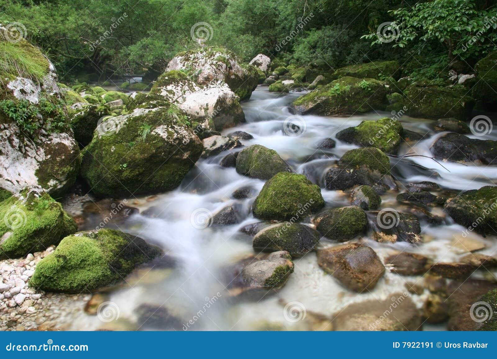 Monte en cascade le soca de fleuve