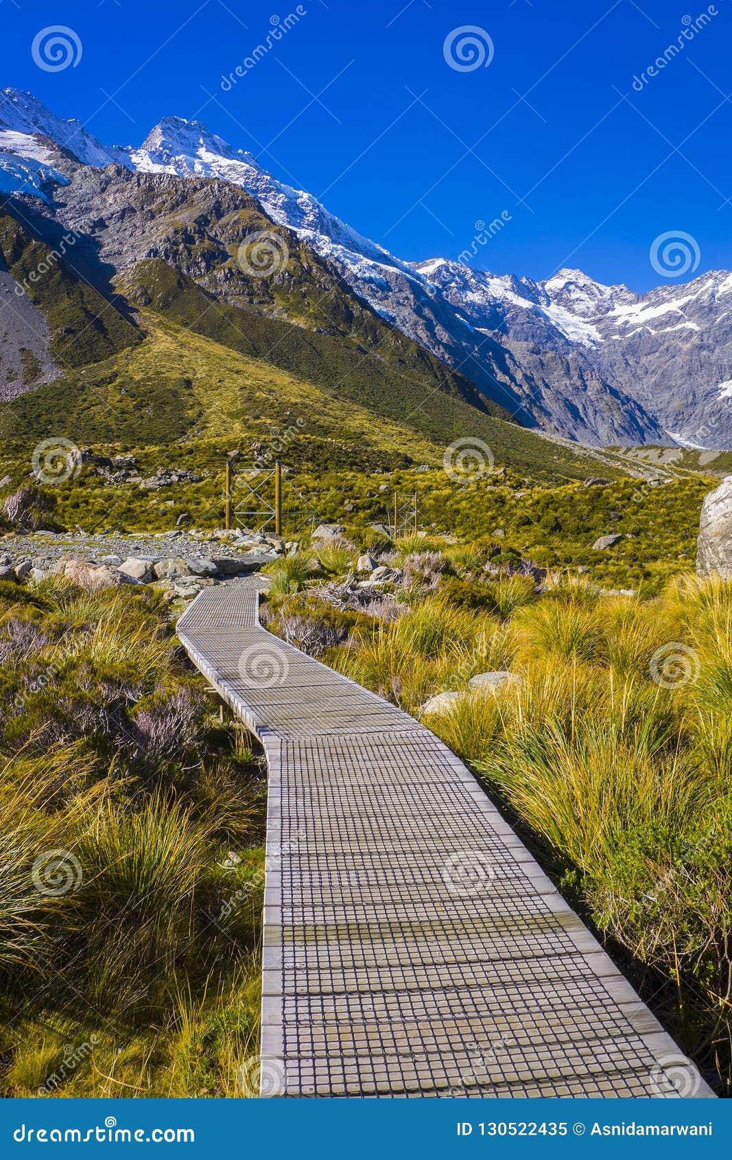 Monte vales de Tasman, cume do sul de parque nacional do cozinheiro de Aoraki Mt