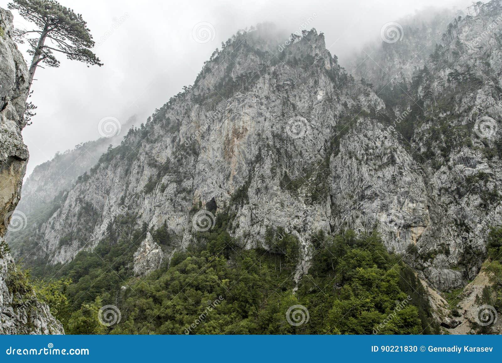 Montenegro. Durmitor National Park. Tara River Canyon