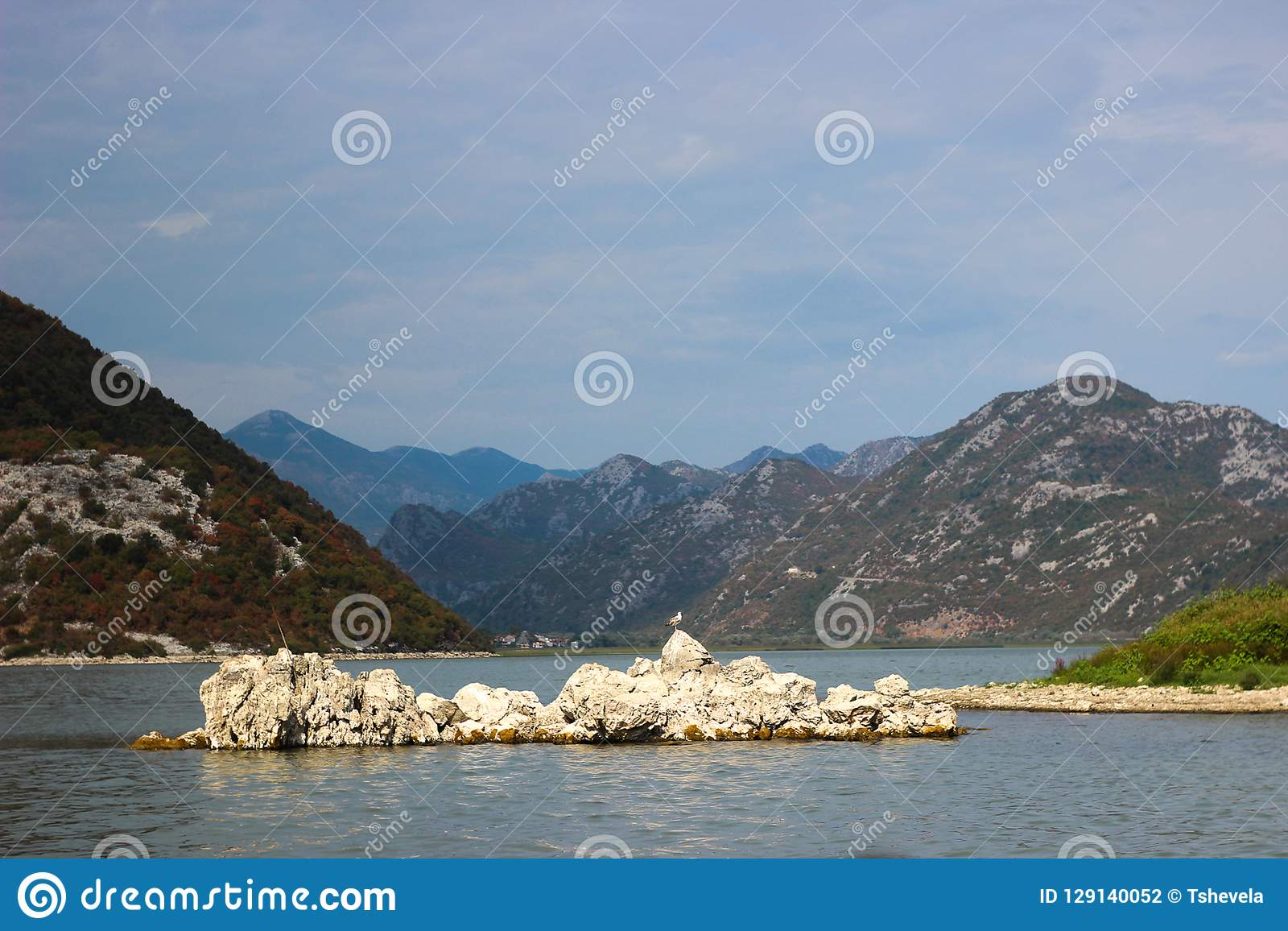 Montenegro skadar lake Ö i laken