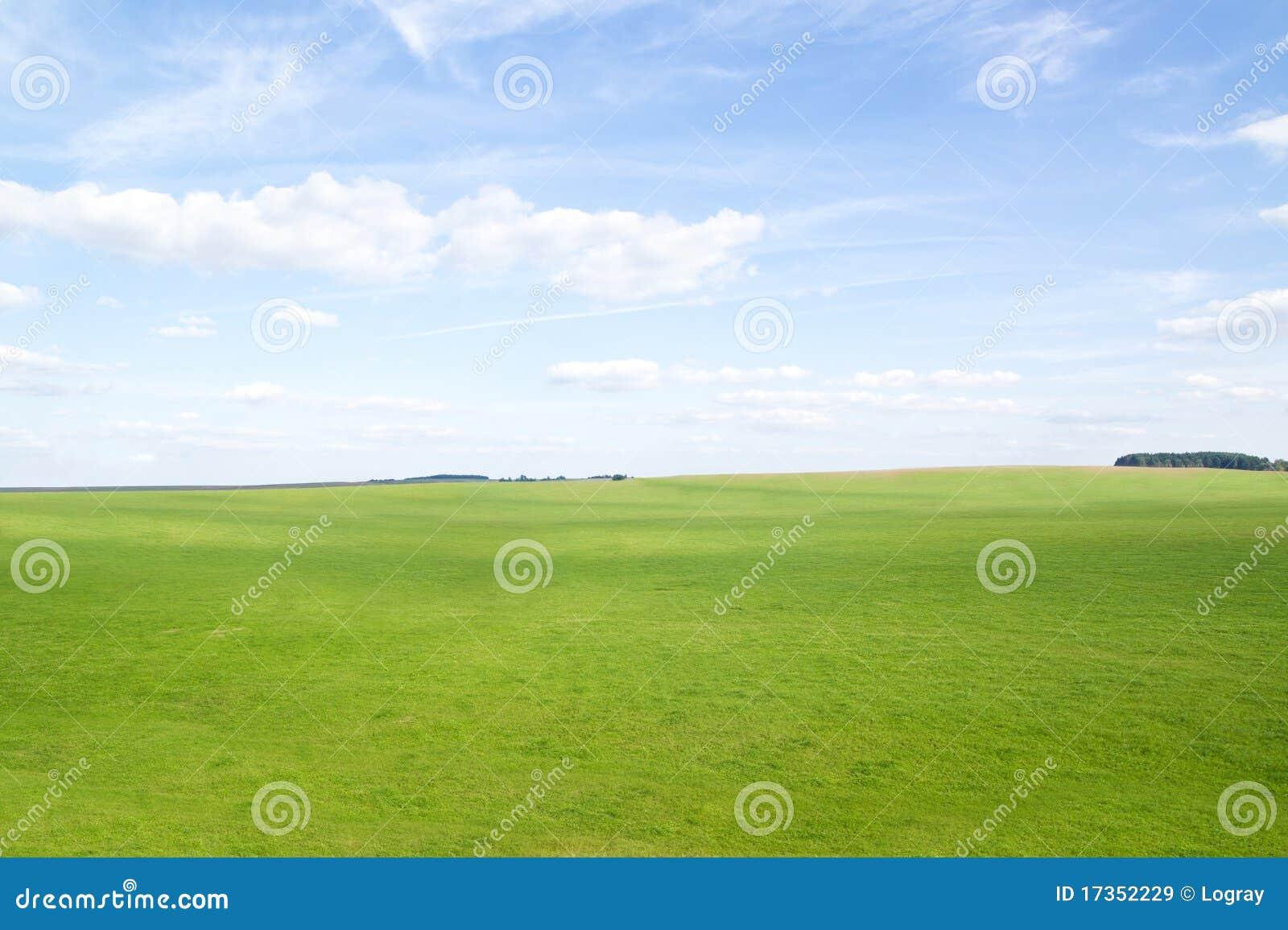 Montes da grama verde sob o sol do meio-dia no céu azul.
