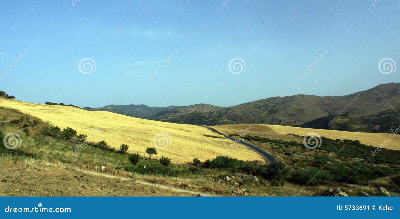 Montes do campo