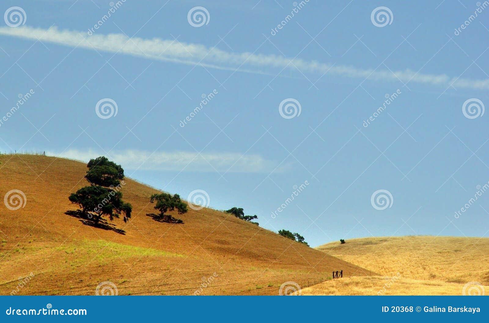 Montes dourados