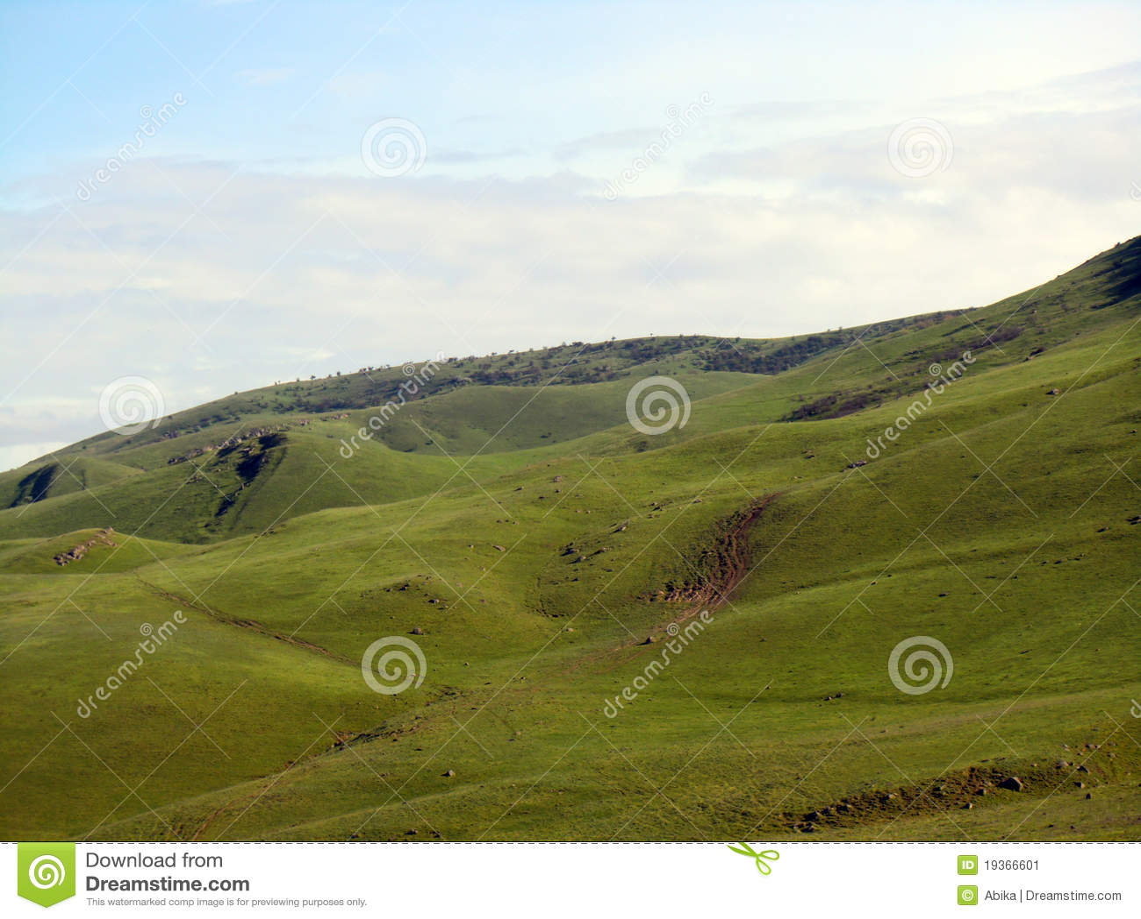 Montes verdes