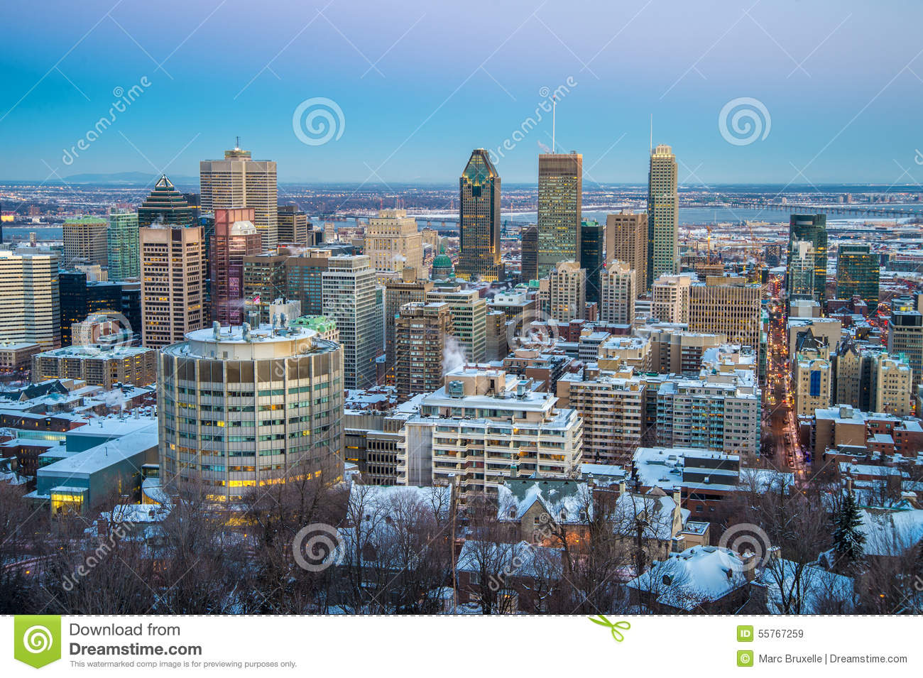 Montreal Downtown in Winter