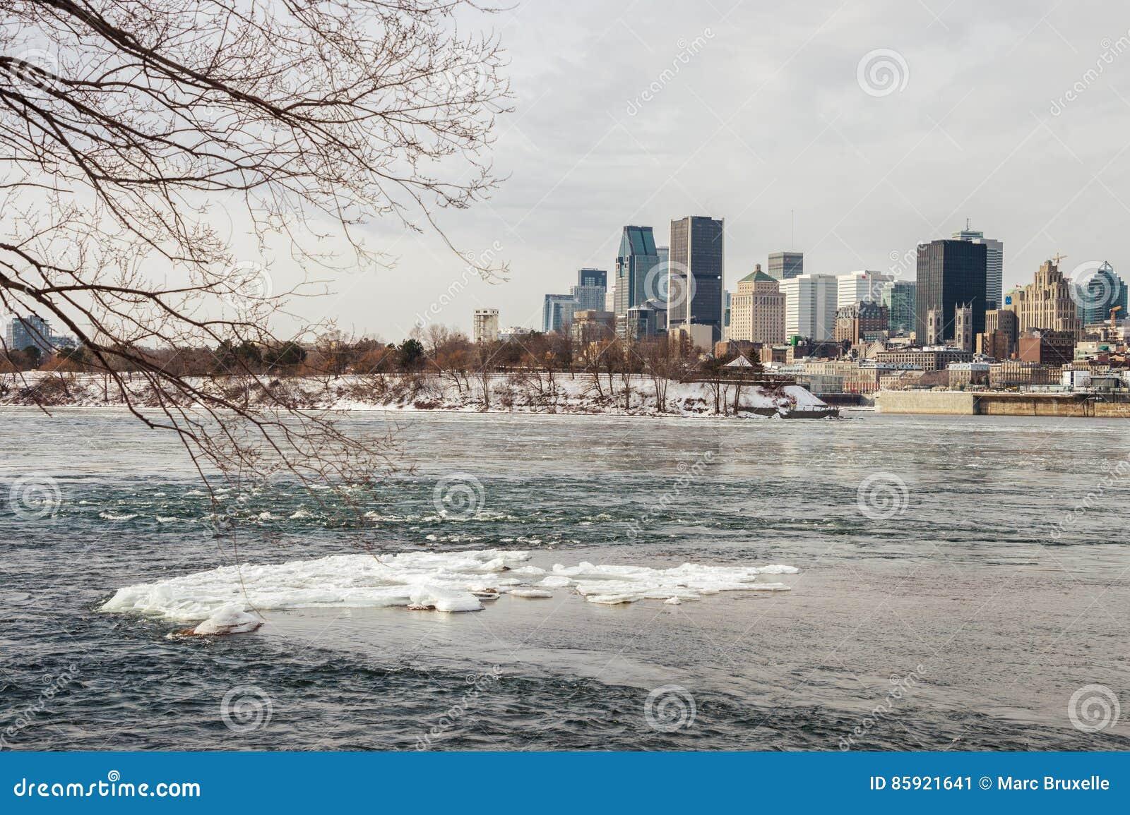 Montreal linia horyzontu w zimie od