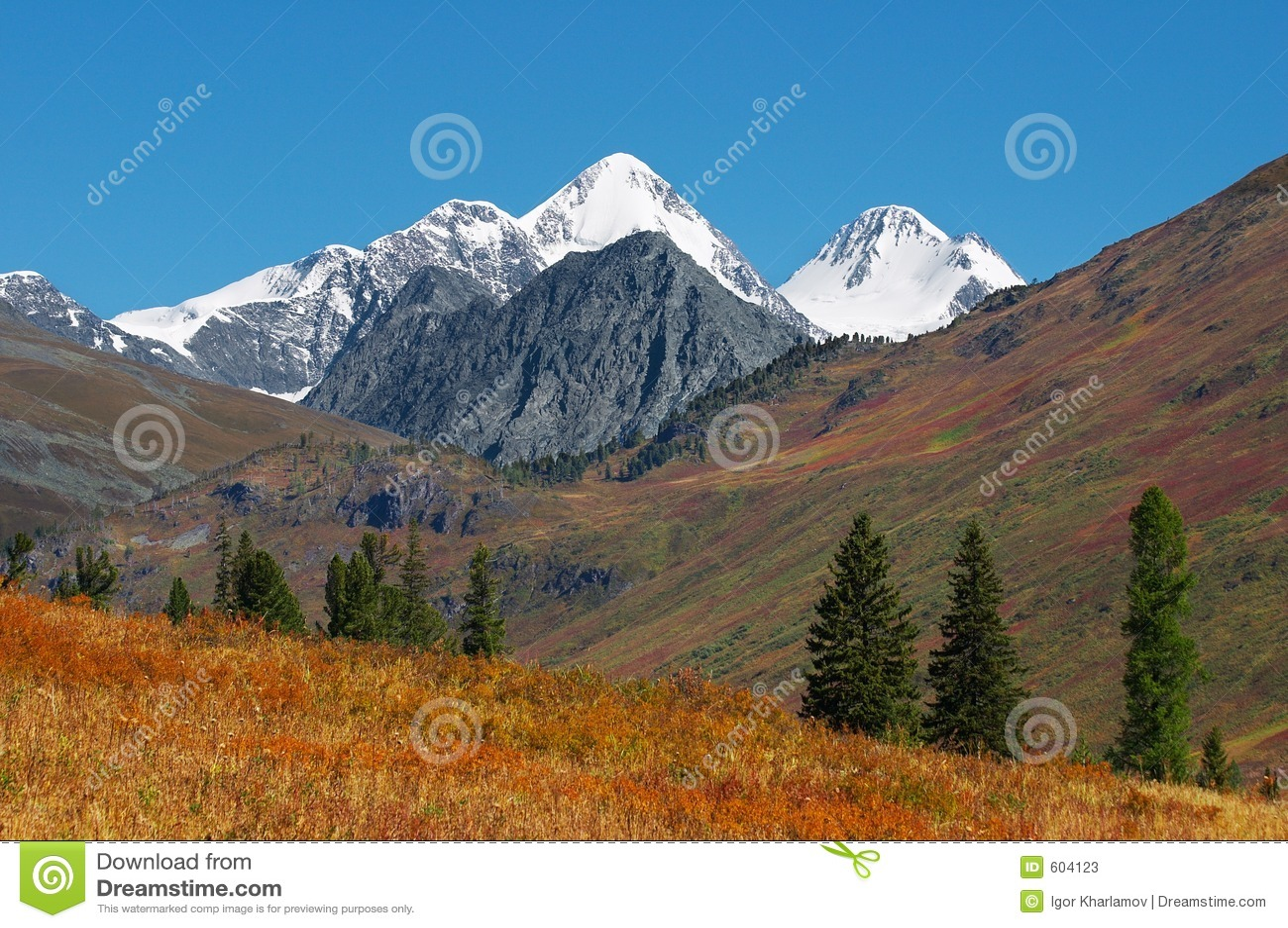 Mooi bergenlandschap.