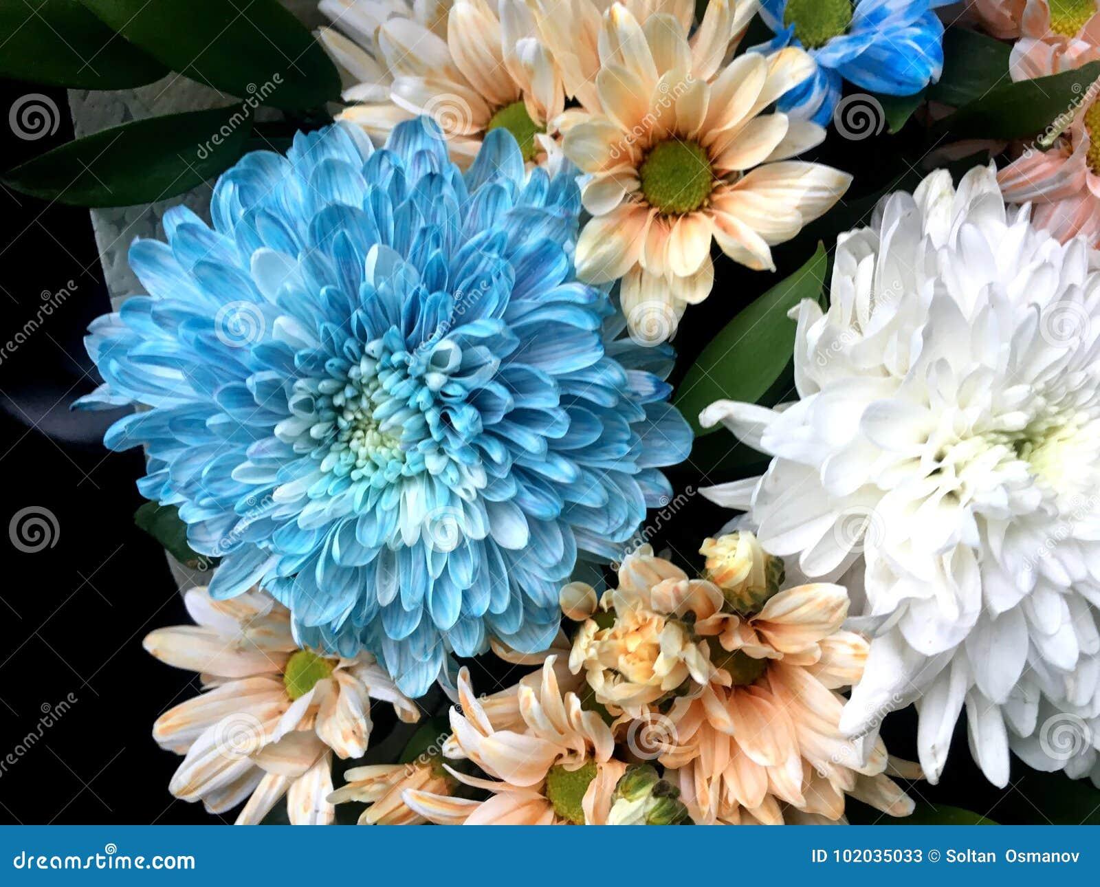 Mooi boeket van verschillende kleurrijke heldere bloemen