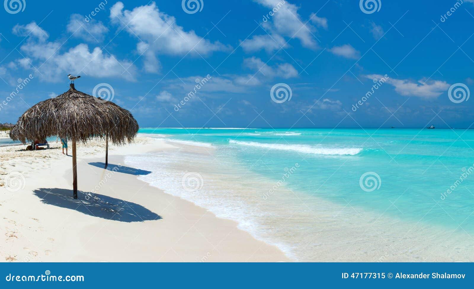 Mooi Caraïbisch strand