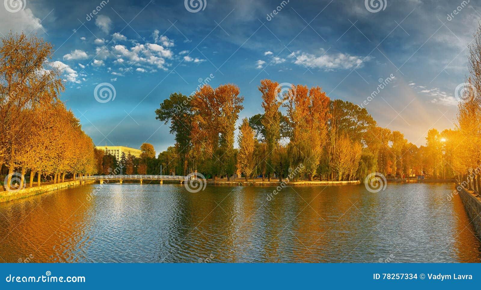 Mooi de herfstpark bij zonnig weer