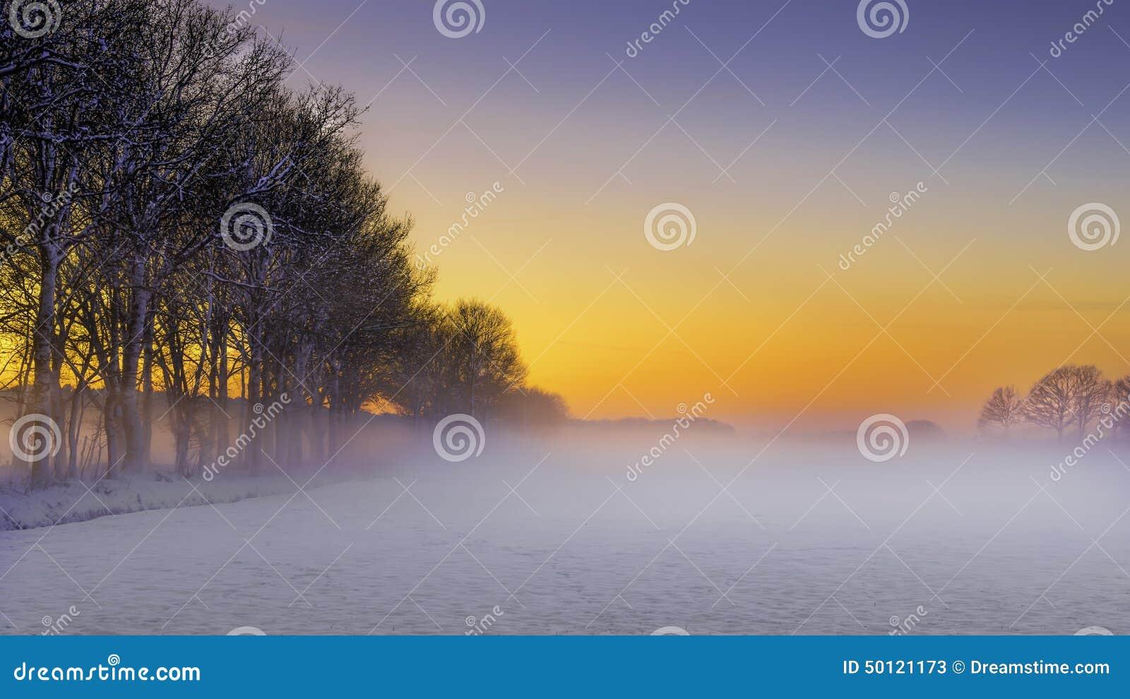 Mooi de winterlandschap bij zonsondergang met sneeuw en mist