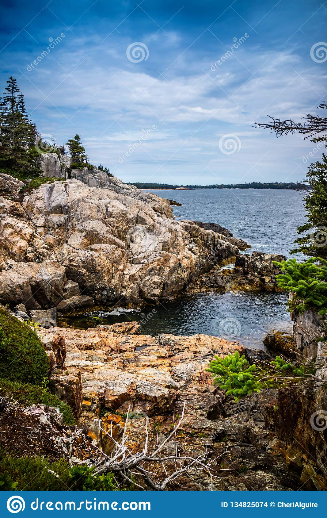 Mooi Duck Harbor Isle-Au Haut in het Nationale Park van Acadia, Maine