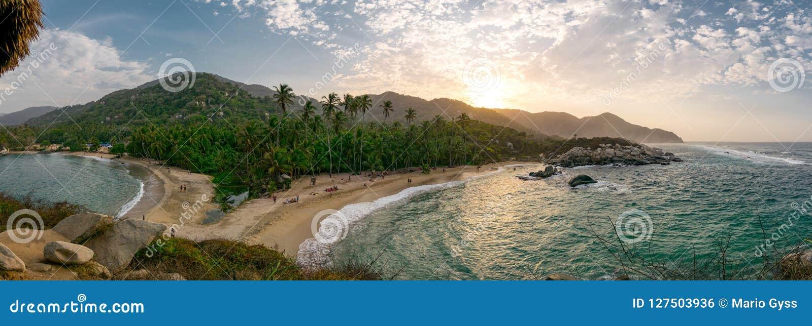 Mooi eenzaam Caraïbisch strand met palmen in het Nationale Park van Tayrona, Colombia