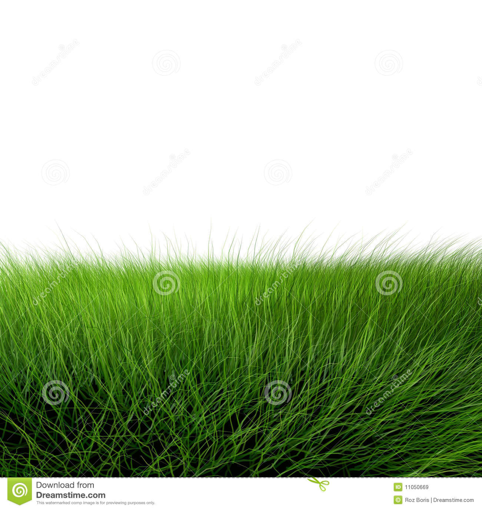 Mooi groen gras