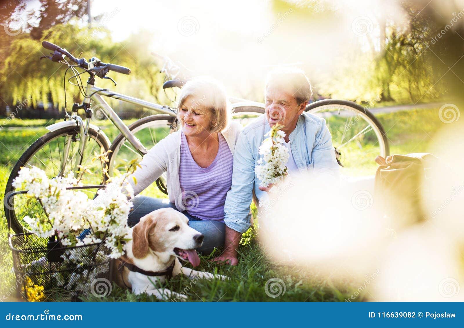Mooi hoger paar met hond en fietsen buiten in de lenteaard